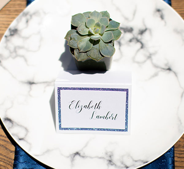 place card on plate with succulent for decoration